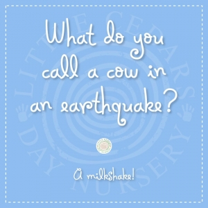 What do you call a cow in an earthquake?