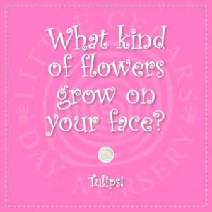 What kind of flowers grow on your face?