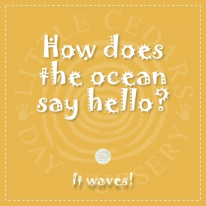 How does the ocean say hello?