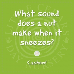 What sound does a nut make when it sneezes?