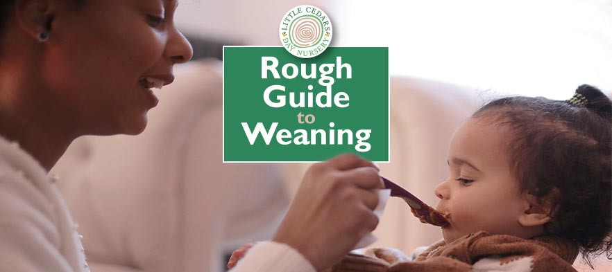 Rough Guide to Weaning