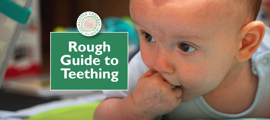 Rough Guide to Teething